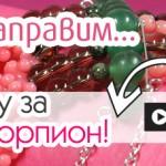 Blog_17_w46B-kak-da-napravim-biju-skorpion