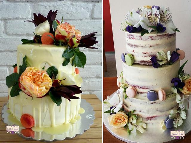 cake-box-6