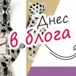 Blog_18_w26B-panterata-na-kartie-984
