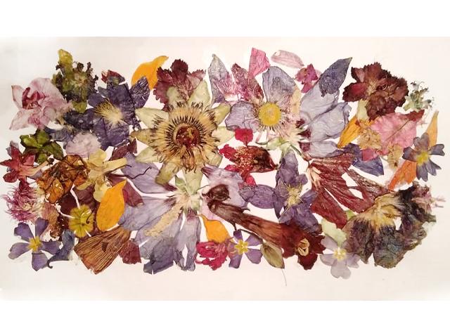 na-gornia-raft-predstavia-iliana-selimska-Flowers-still-live-i-arfa-2
